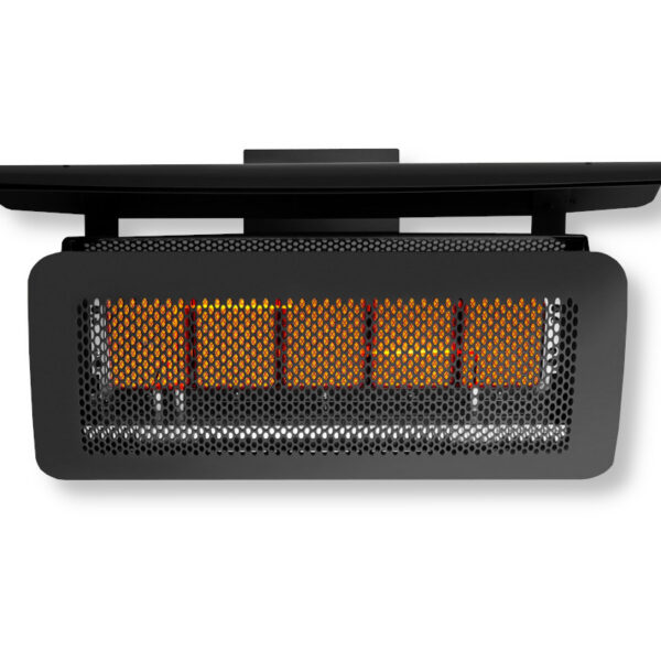 Tungsten Wall Mounted Gas Outdoor Heater